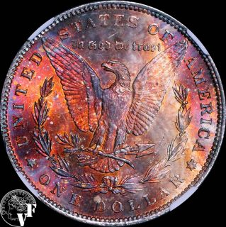 1888 P ★ NGC MS62 ★ Wood Grain Rainbow Toning ★ Morgan Silver