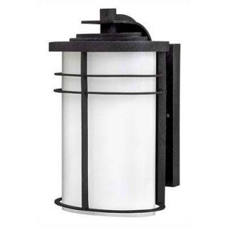 Hinkley Lighting Ledgewood Energy Star 12 Outdoor Wall Lantern in
