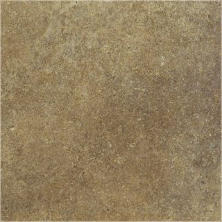 Shaw Floors Brushstone 18 Porcelain Tile in Adobe   CS53C 00600
