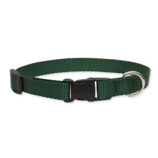 Lupine Go Go Gecko 1 Adjustable Large Dog Collar   WLF41052/53/54