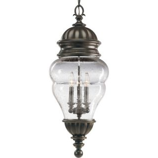 Progress Lighting Anderson Outdoor Hanging Lantern in Antique Bronze