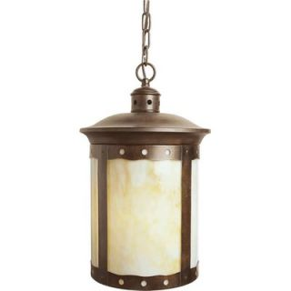 Forte Lighting One Light Outdoor Pendant with Honey Shade   1312 01