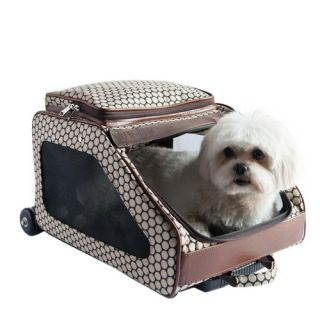 Pet Carriers Travel Pet Crates, Cat & Dog Airplane