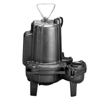 Wayne Water Systems 2 HP Manual Operation Cast Iron Heavy Duty