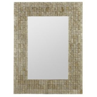 Cooper Classics Davis Wall Mirror in Distressed Aged Gold