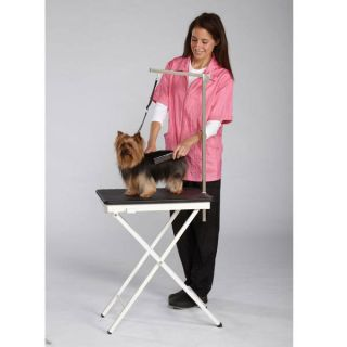 Travel Show Home Mobile Foldable Grooming Table Adjustable Arm
