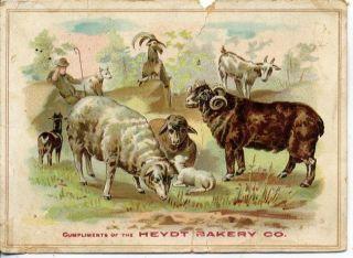 Victorian Trade Card Heydt Bakery Co St Louis Missouri