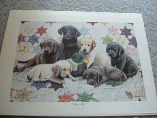 Dream Team by Joshua Spies Signed Numbered Past Ducks Unlimited Print