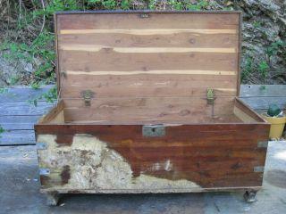 Vintage Cedar Hope Chest