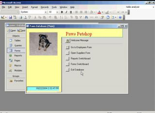 2003 Training DVD Video Tutorials Over 4 Hours of Learning