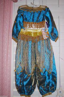Deluxe Princess Jasmine Costume Dress Aladdin Jeannie