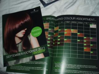 Schwarzkopf Essensity Hair Color Chart