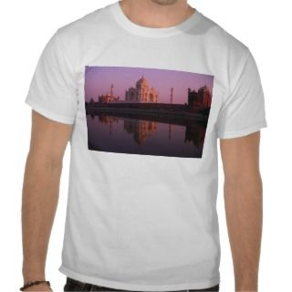 Taj Mahal and Jamid Masjid Tee Shirt