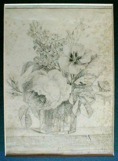 Fine Antique Drawing Framed Botanical Flowers c1870 France French