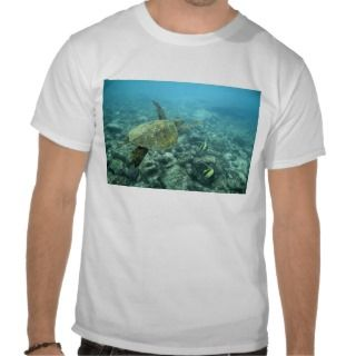 USA, Hawaii, Big Island, Green sea turtle 2 Shirts