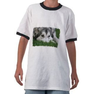 Kids Siberian Husky T Shirts, Infant & Baby Siberian Husky Shirts