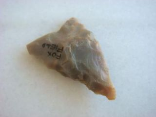 Arrowhead Found in Fox Field Kentucky Old Indian Artifact