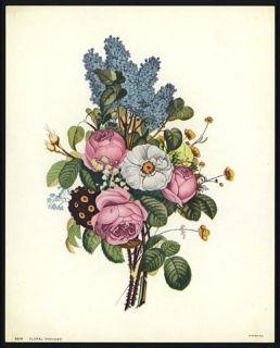 Jean Louis Prevost Vintage Botanical Print Roses Camellia Auricula