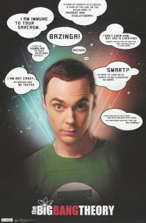 Big Bang Theory Sheldon Quotes Jim Parsons 22x34 Poster
