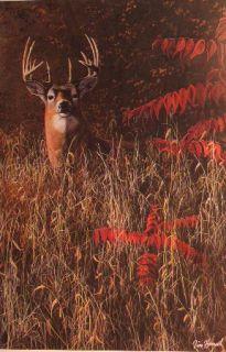 Jim Hansel Deer Print Keeping The Watch