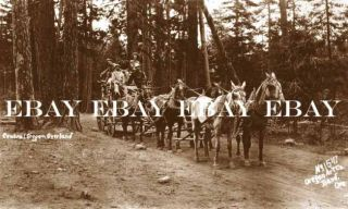 Central Oregon Overland Stage Coach Stagecoach Bend Oregon Photo