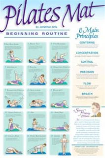 Pilates Mat Exercise Beginner Wall Chart Fitness Poster