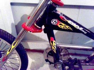Kids Schwinn Stingray Chopper Bike