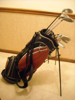 Ladies Golf Set 6 Irons 3 Woods Putter Bag Very Good Condition