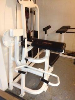 Professional Gym Quality Life Fitness Bicep Arm Curl Machine
