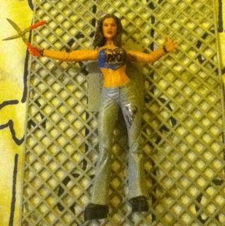 WWE Wwf Diva Lita Signed Rare 2003 Trish Cena Kane hhh matt jeff tna