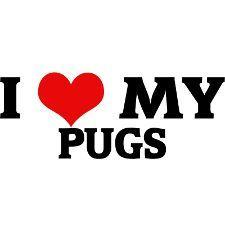 Set Of 2 I Love My Pugs Window Clings