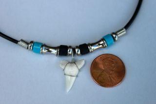 New Mako Shark Tooth 3 4 w 2mm Plastic Cord 18 Necklace Choker 10100