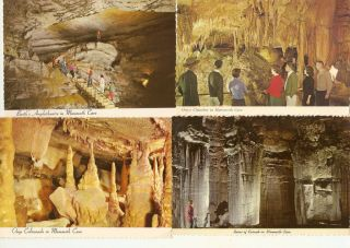 Lot of Mammoth Cave National Park Kentucky Postcards