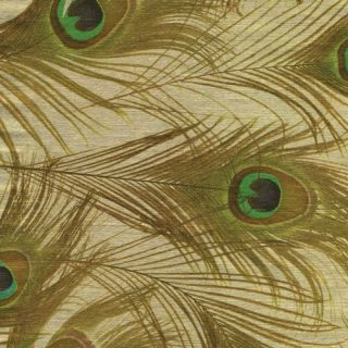 Caspari 2 8 Rolls Peacock Gold Gift Wrap Wrapping Paper