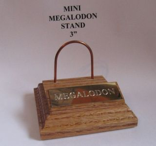 Megalodon Mini Shark Tooth Teeth Stand Gold Engraved Plaque 3x3Mini
