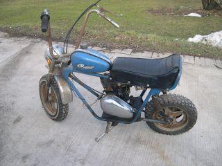 Speedway Scorpion Mini Bike Rupp Bonanza Tecumseh Minibike