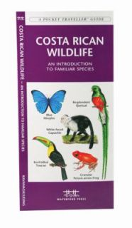 Costa Rican Wildlife An Introduction to Familiar Species by James