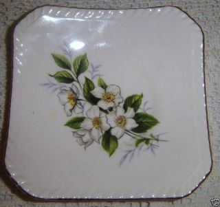 Royal Adderley Floral Bone China Pin Dish or Coaster