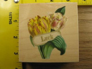 ANNA GRIFFIN LUCK TULIP FLOWER BY ALL NIGHT MEDIA Rubber Stamp #100