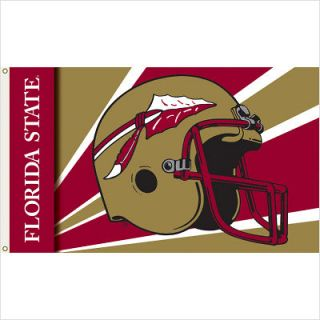 BSI Products Florida State Seminoles Flag with Grommets  Helmet Design