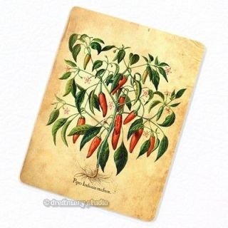 Hot Chili Pepper Plant #2 Deco Magnet; Fruits Kitchen Decor Food