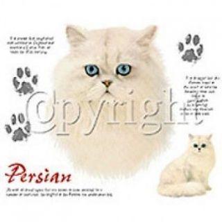 Cat T Shirt Persian Cat Shirt Description Of Breed Tee