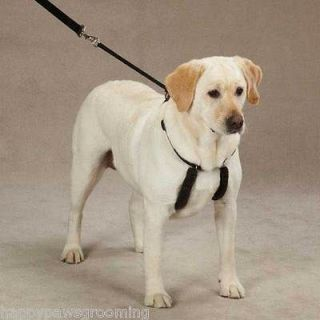 Pet Supplies Dog Training Leads/Leashes