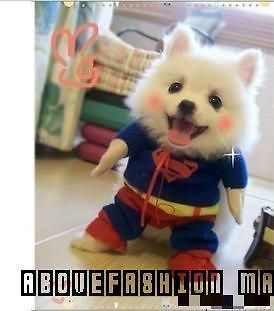 New 2012 dogs superman outfit big dog clothes summer pet supplies