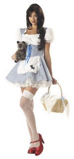 Storybook Sweetheart Womens Adult Dorothy Costume