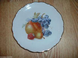 Bavaria Schumann Arzberg Fruit design plate