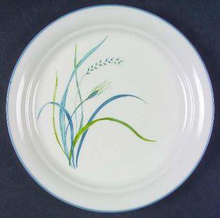 Corning Coastal Breeze Luncheon Plate, Fine China Dinnerware   Corelle,Blue&Gree