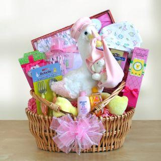 Special Stork Delivery Baby Girl Gift Basket Multicolor   7438